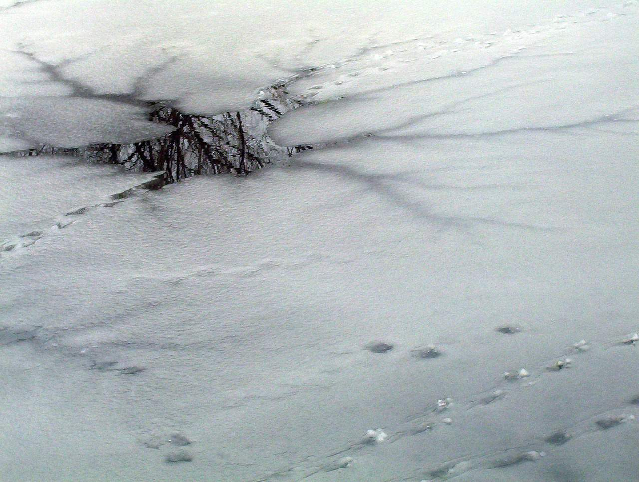 Is Google's Dragonfly Treading on Thin Ice?